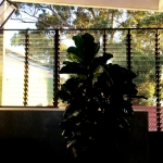 Sydney steel windows custom designed and built in Sydney NSW